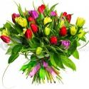 Kytica mix tulipánov